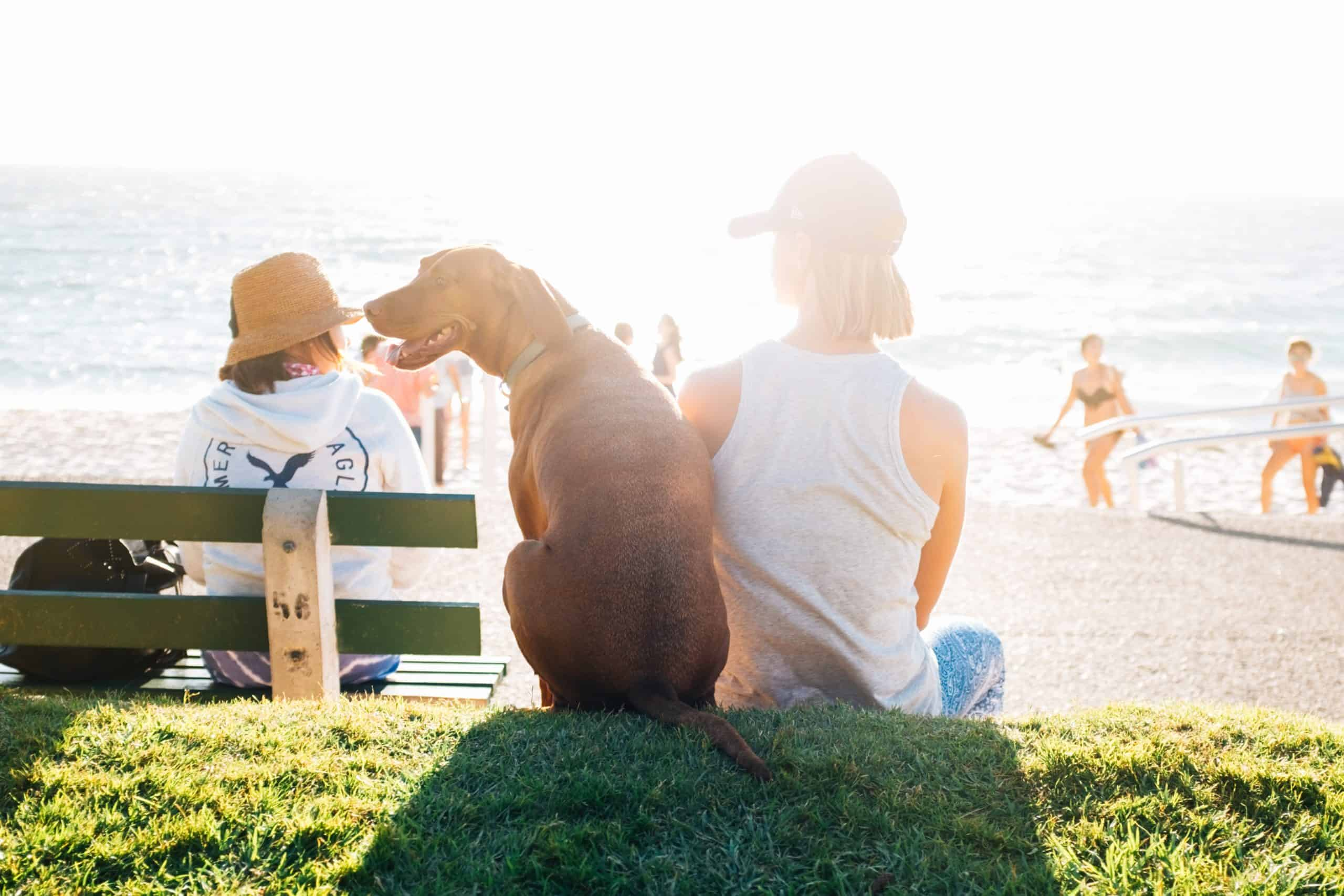 3 Tips For A Stress-Free Family Vacation Every Time